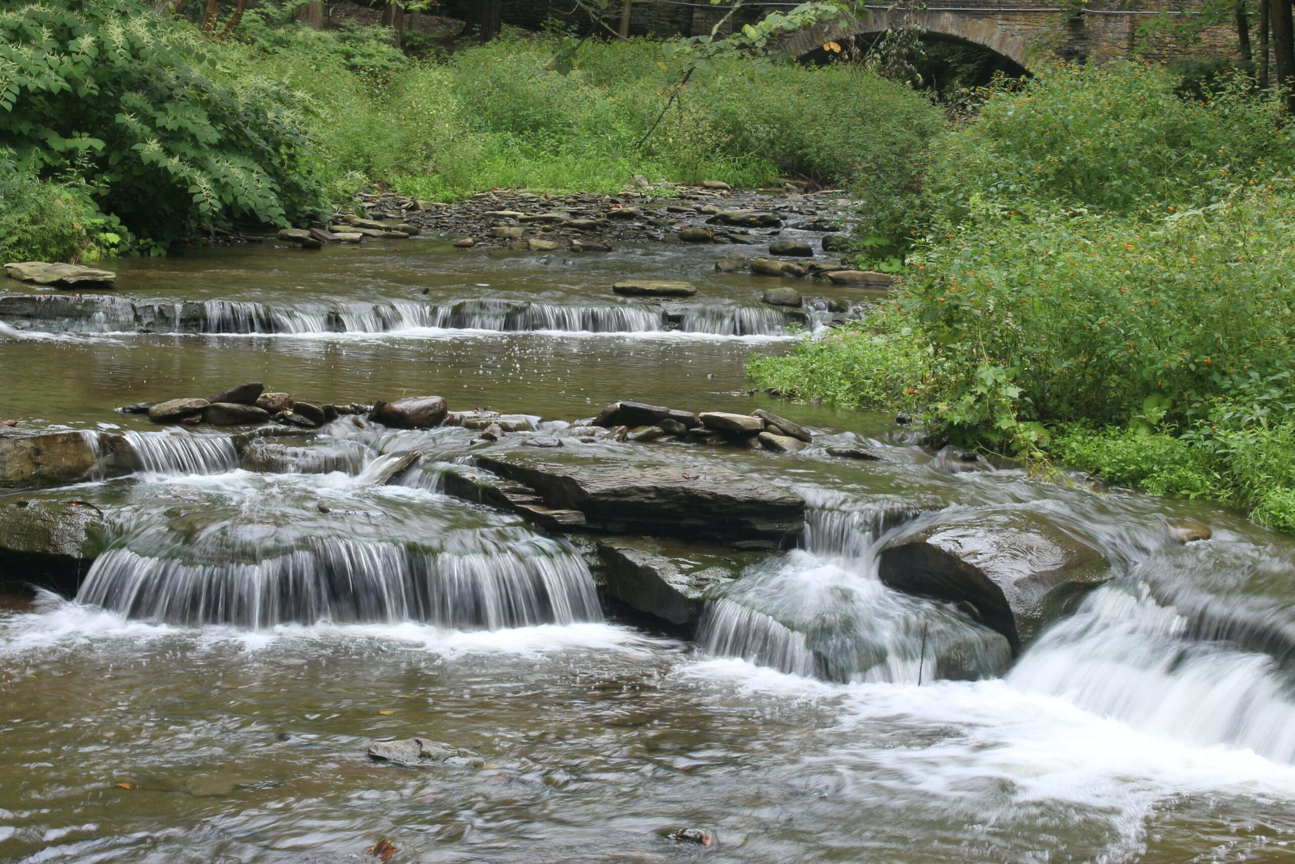 5 Can't-Miss Waterfall Hikes around the Finger Lakes